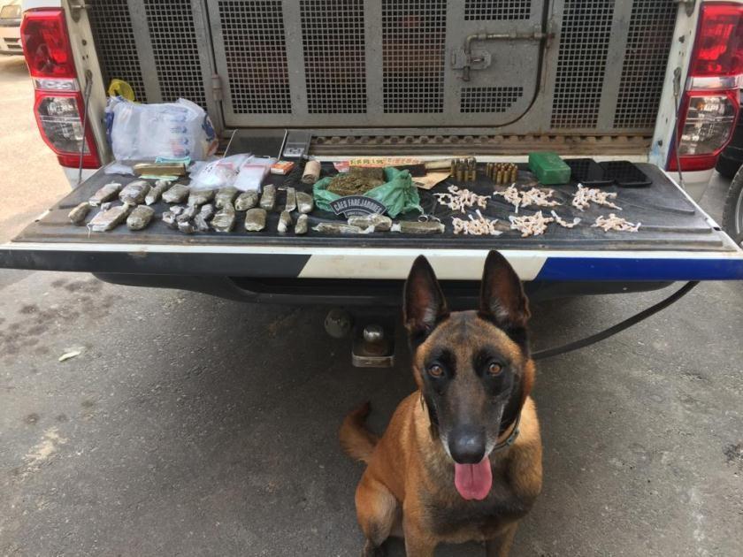 Operação policial apreende drogas e munições em Anchieta